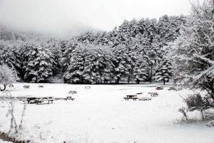 bir kış sabahı